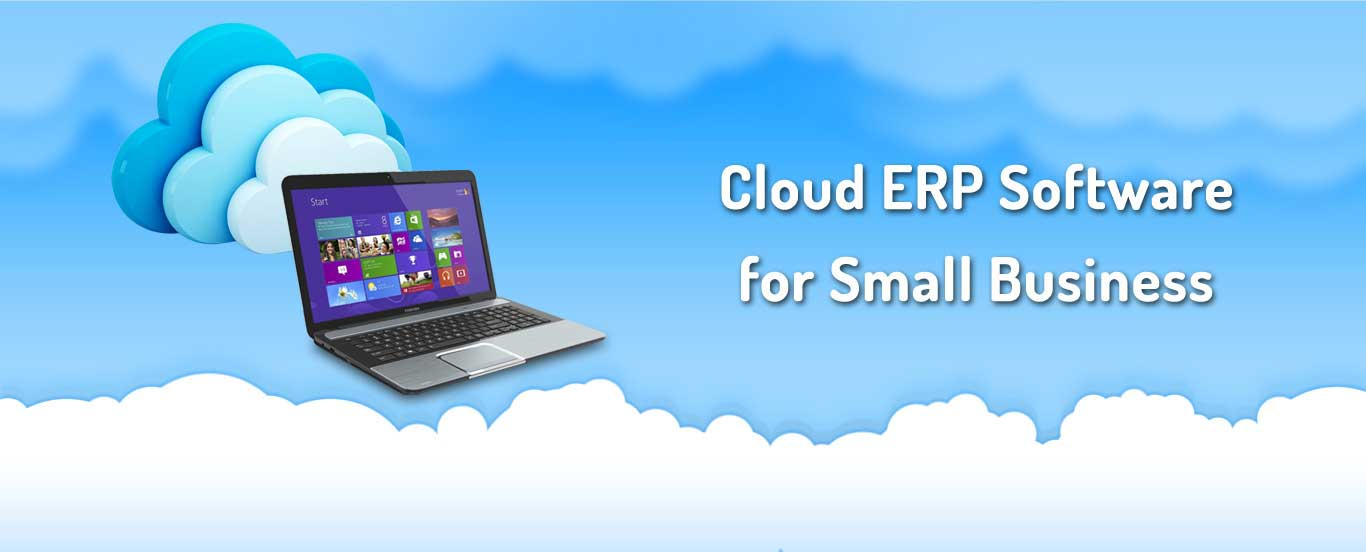 Cloud ERP Software for Small Business