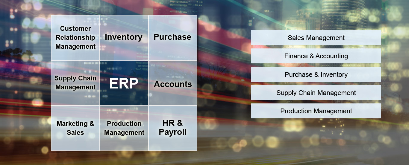 ERP Software Solutions, Delhi NCR