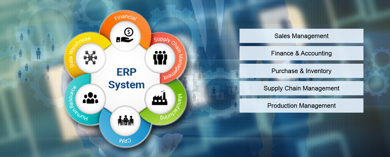 ERP Software Solutions in Gurgaon