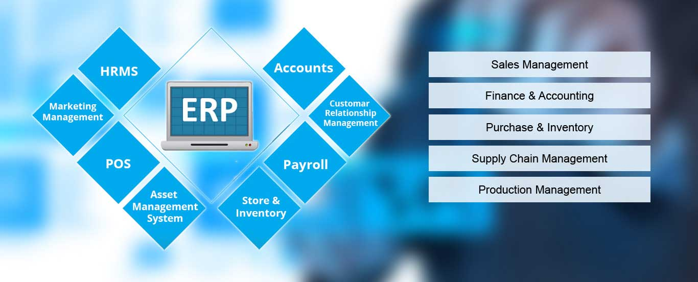 Online ERP Software, Web Based ERP Solutions India
